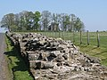 Hadrian's Wall west of Birdoswald (2b) - geograph.org.uk - 1357856.jpg