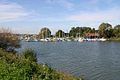 Hafen Schlungenhof.jpeg