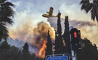 November 2016 Israel fires