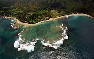 Halehomaha, Hawaii - Image: Halehomaha (5227151983)