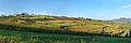 Hallauerberg Panorama.jpg