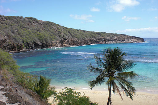Hanauma Bay, Oahu, Hawaii (Turnstange)