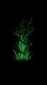 Herbal Asclepios rod 4.png