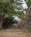 Hiikone catle , 彦根城 - panoramio (3).jpg