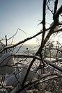 Hlubočky Mariánské Údolí - panoramio - Tomas Lollky (3).jpg