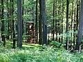 Hochsitz im Wald beim Vogelsruhweg - geo.hlipp.de - 18988.jpg