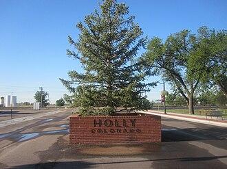 Holly, Colorado - A spruce tree, not a holly tree, in Holly, Colorado
