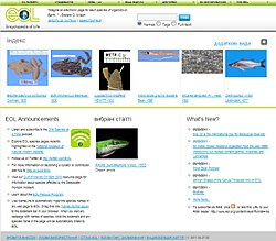 Home page of EOL - ua.jpg