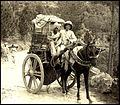 Horse-drawn carts in old India 2.jpg