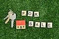 House for Sale - 51245194868.jpg