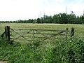 Huldenberg Reservaat, De dode Beemden - panoramio.jpg