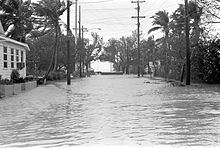 Slightly elevated photo taken in the middle of a flooded street. Palm trees, utility poles, and residences are visible on both the left and right sides of the street.