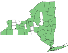 Impatiens capensis NY-dist-map.png