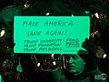 ImpeachTrumpEve-Pgh-3-59763 (49235951502).jpg
