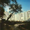 In a yard of Balti (1985). (18162614972).jpg