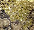 Iodargyrite-Chlorargyrite-122948.jpg