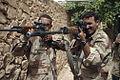 Iraqi SVD.JPG