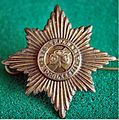 Irish Guards cap badge.jpg