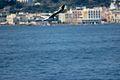 Ischia desde el mar. 12.JPG