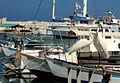 Jaffa port visitors.jpg