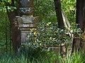 Japanese Tea Garden, San Francisco (5572318327).jpg