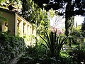 Jardin Serre de la Madone - DSC04023.JPG