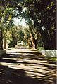 Jardin de Pamplemousses (3000873411).jpg