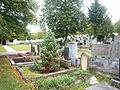 Javorník (HO), evangelický hřbitov (3).JPG