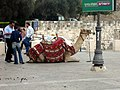 Jerusalem weekend (66738981).jpg