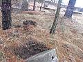 Jewish cemeteries in Vileyka 07.jpg