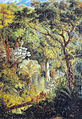 Johann Moritz Rugendas - Árvore gigantesca na selva tropical brasileira, 1830.jpg