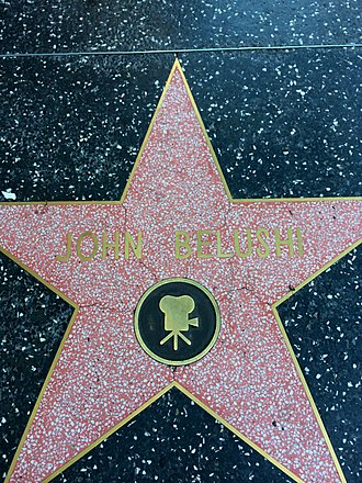 John Belushi - John Belushi's star on the Hollywood Walk of Fame