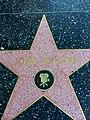 John Belushi's Star.jpg
