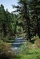 John Day River, Malheur National Forest (36169543782).jpg