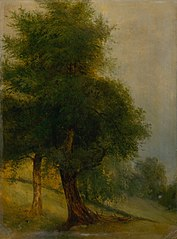 Trees on a Slope