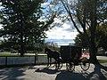 Jrb 20071024 Mennonite Amish buggy Shipshewana Indiana.JPG