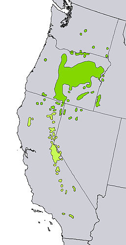 Juniperus occidentalis range map.jpg