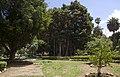 Kalsa, Palermo, Sicily, Italia - panoramio.jpg