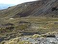 Kepler Track, New Zealand (36).JPG