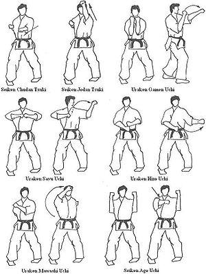 Karaté Kyokushinkai 300px-Kihon_Geiko