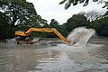 Kings Lake Dredging - Indian Botanic Garden - Howrah 2013-10-27 3827.JPG