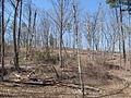 Kings Mountain National Military Park - South Carolina (8558918074) (2).jpg