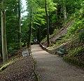 Knaresborough - panoramio (10).jpg