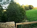 Knee Brook - geograph.org.uk - 247254.jpg