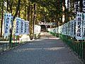 Kumano-hongû-taisha Shrine - Approach.jpg