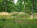 Kummeliberg gravfält.jpg