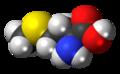 L-Methionine molecule spacefill.png