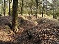 LOOPGRAAF 14-18 MASTENBOS KAPELLEN - panoramio (2).jpg