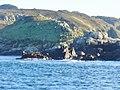 La Grune Islet - geograph.org.uk - 1674.jpg