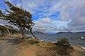 Lago Bianco - panoramio (1).jpg